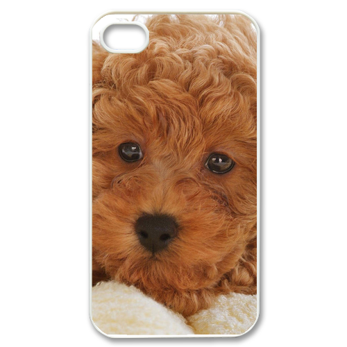 dog bear Case for iPhone 4,4S