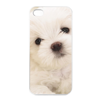 lonely bichon frise Charging Case for Iphone 4