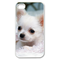 small white dog Case for iPhone 4,4S