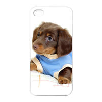 sport dog Charging Case for Iphone 4