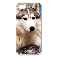 the dog at home Case for Iphone 5