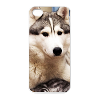 the dog at home Charging Case for Iphone 4