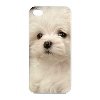 bichon frise Charging Case for Iphone 4