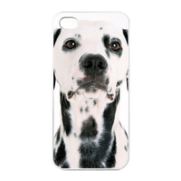 Dalmatians Charging Case for Iphone 4