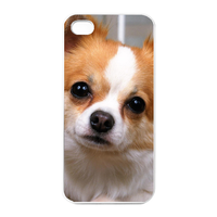 Papillon Charging Case for Iphone 4