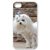 pretty dog Case for iPhone 4,4S
