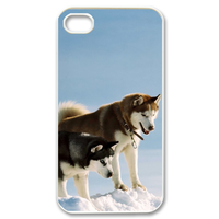 siberian husky Case for iPhone 4,4S