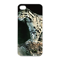 the leopard on the branch Charging Case for Iphone 4