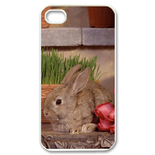 lonely rabbit Case for iPhone 4,4S