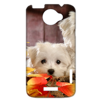 two bichon frises Case for HTC One X +