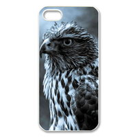 thinking eagle Case for Iphone 5