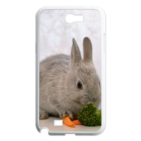two rabbits Case for Samsung Galaxy Note 2 N7100