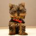 dog idol