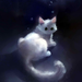 little cat princess