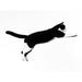 the running cat