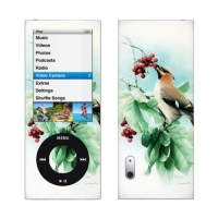 iPod nano 5th Gen Skin