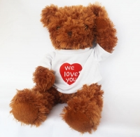 Cute Brown Teddy Bear (Front and Back sides)