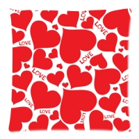 """Custom Zippered Pillow Case 18""""x18""""(two sides)"""