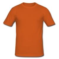 Men's Slim Fit T-shirt Model T13