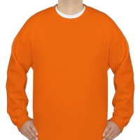 Gildan Crewneck Sweatshirt(NEW) Model H01