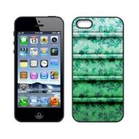 Custom Case for iPhone 5S
