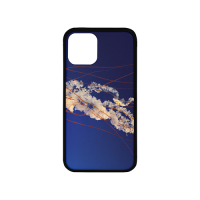 "Custom Case for Iphone 11 Pro 5.8""(Laser Technology)"